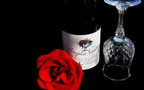 роза, вино, бакал