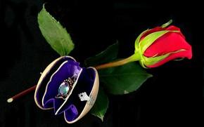 bijouterie, flower, rose
