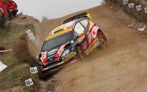 ford, Fiesta, WRC