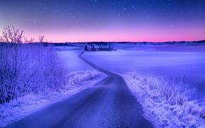 道路, 挪威, 冬天, 天空