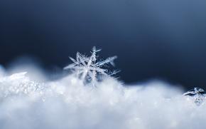 snow, crystal, pattern, Macro, snowflake