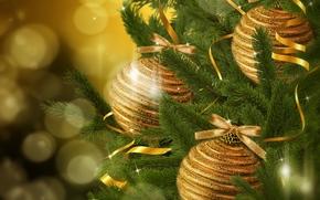 新年, 金, 圣诞节, 新年, 玩具, декорации, 圣诞, 枞树, 分行, 装饰物, 云杉, 气球, 圣诞节