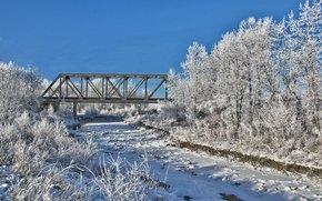 inverno, ponte, alberi, paesaggio