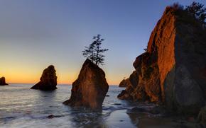 Parco nazionale di Olympic, Washington, tramonto, mare, Rocce, paesaggio