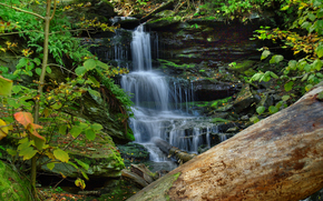 forest, waterfall, Rocks, nature