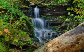 лес, водопад, скалы, природа