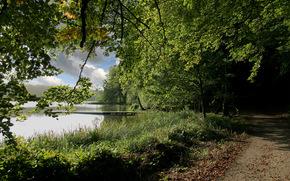 lago, alberi, stradale, ponte, paesaggio