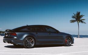 ауди, Audi, пальма