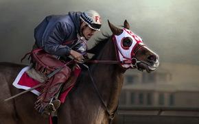 конь, спорт, всадник