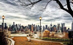albero, città, L'America, Grattacieli, USA, NY, autunno