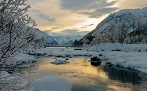 alberi, nevicata, fiume, Montagne, inverno, sera