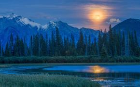 luna, Canada, foresta, lago, полнолуние, Montagne