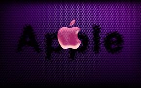 text, notebook, computer, apple, emblem, phone, logo, гаджет