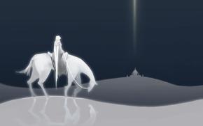 Всадник, белый, пустыня, лошадь