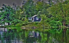 lake, forest, cabin, landscape