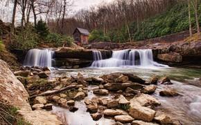 河, 瀑布, 石头, 树, 磨, 景观