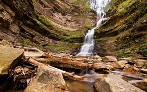 瀑布, 岩石, 石头, 树, 性质