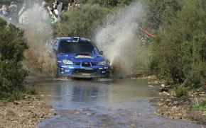Italy Rally, WRC, 2008, Subaru