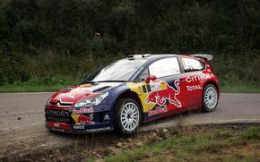 WRC, 2008, Citroen