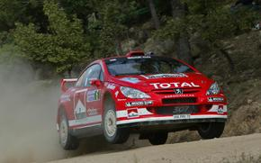 Wrc, 2004, Peugeot, 307, Rally Italy