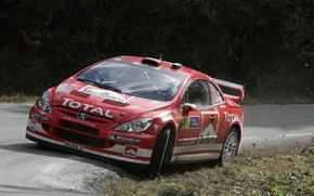 WRC, 2004, Peugeot, 307, Rally Spain