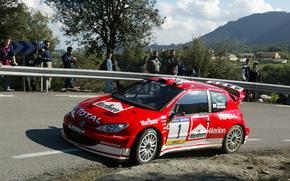 Wrc, 2003, Peugeot, 206, Rally Spain
