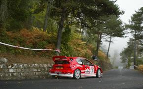 Wrc, 2003, Peugeot, 206, Rally San Remo