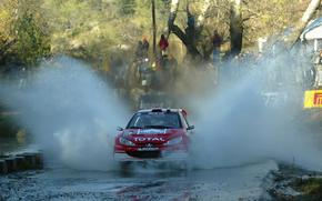 WRC 2003, rally Argentina, Peugeot