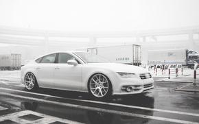 ауди, Audi