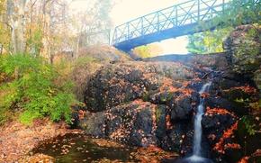 瀑布, 岩石, 桥, 树, 景观, 秋
