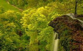 roccia, alberi, cascata, vista dalla cima, paesaggio