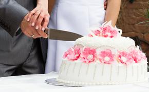 sposo, matrimonio, situazione, torta, matrimonio, sposa