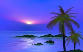 性质, 天空, 海, 景观, 云, 日落, 岛, 手掌