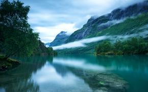 pietre, Loen Lake, alberi, Scandes, nebbia, nuvole, cielo, Norvegia occidentale, superficie liscia, fondo
