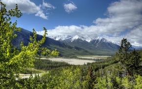 Банф, Альберта, лес, Скалистые горы, Канада