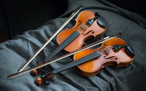 музыка, фон, скрипки