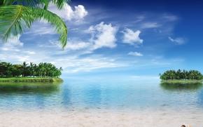 tropicale, Paradise, spiaggia, palme, mare, oceano, sunshine, estate, Vacanza, spiaggia, mare, Palme, tropici, sabbia, puntellare