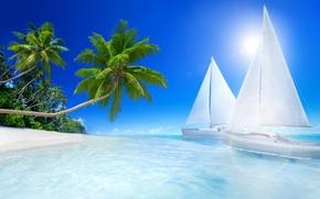 mare, tropici, ricreazione, spiaggia, Palme, barche a vela, mare, Tropici, vacanza, spiaggia, palme, Barche a vela