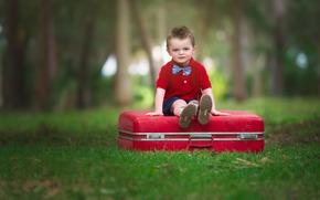 широкоэкранные, настроение, полноэкранные, чемодан, широкоформатные, ребенок, фон, мальчик, взгляд, сидит, обои