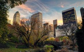 trees, city, Manhattan, USA, nature, river, New York, Central Park, evening, home, building, Skyscrapers, bridge