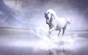 лошадь, конь, 3d