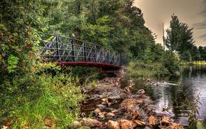 lago, ponte, pietre, alberi, Anatra, paesaggio