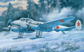 пикирующий, арт, поле, советский, зима, снег, Вов, рисунок, бомбардировщик, на лыжных шасси, самолет