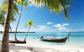 太陽, 岸, 空, 熱帯, 海, ボート, ビーチ, 砂, パームス, 海