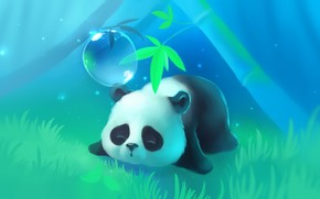 albero, panda, posti letto, erba, semaforo, bugie, bolla