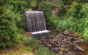 cascata, piccolo fiume, alberi, pietre, piante, natura