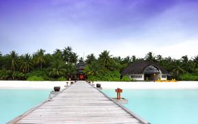 пляж, деревья, мост, отель, домик, океан, Мальдивы, бунгало, пальмы, природа, песок