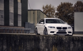 building, front view, BMW, white, sky, trees, BMW