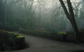 fog, park, morning, bridge
