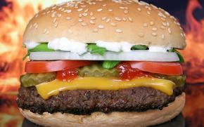 hamburger, arco, cotoletta, pomodori, formaggio, pane